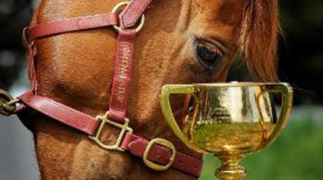 Horse-&-Cup