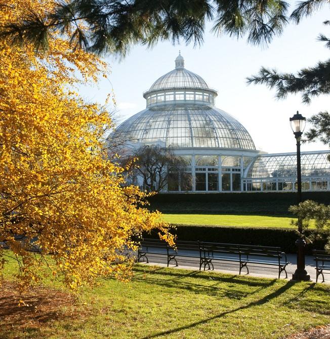 Enid A Haupt Conservatory New York Botanical Garden