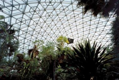 Climatron at Missouri Botanical Garden