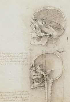 Leonardo da Vinci: Anatomist Inside his Mind, Inside the Body