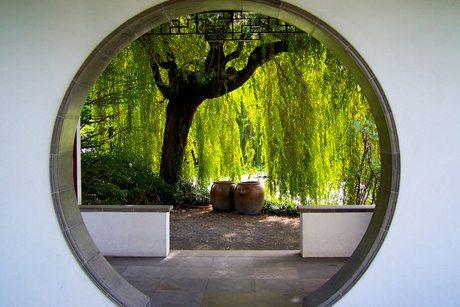 Chinese Garden Sydney 2