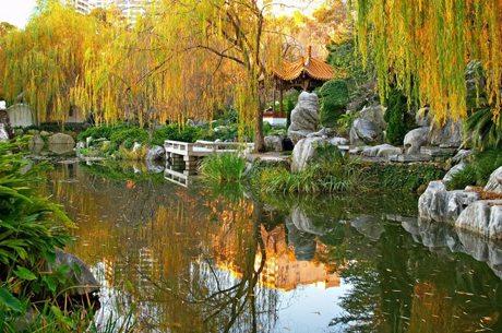 Chinese Garden of Friendship Darling Harbour Sydney
