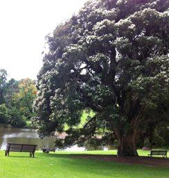 Gardens Melbourne