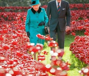 Queen & Duke with Poppies