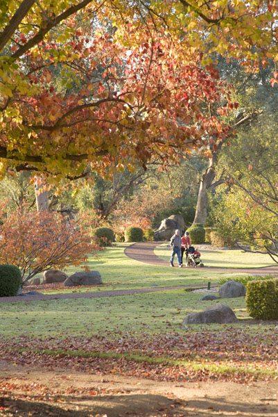 Autumn in Japanese Garden