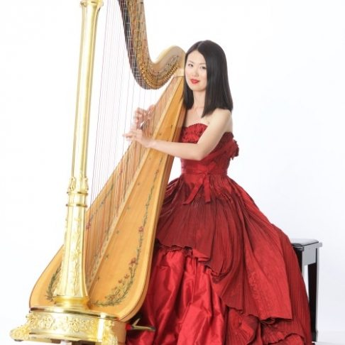 MSO Harp