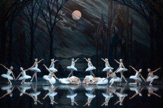 Swan Lake Best