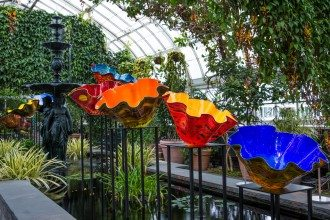 Chihuly.3